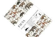 Fauna | Gift + creative papers